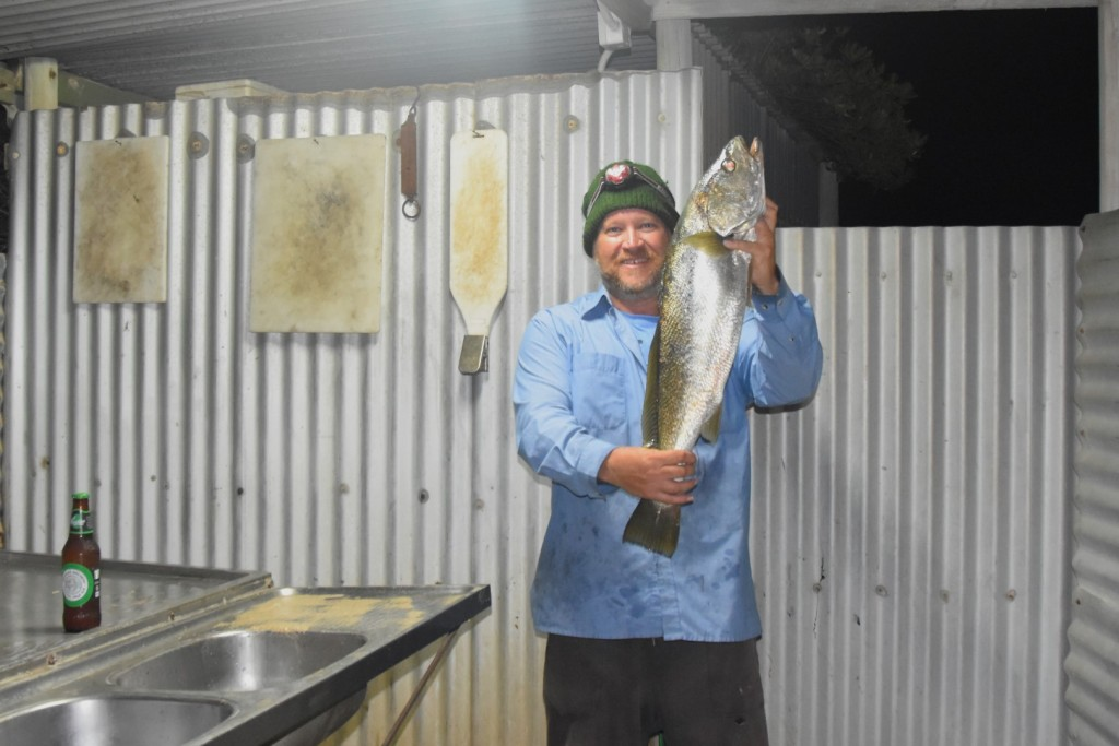 A legal size Mulloway