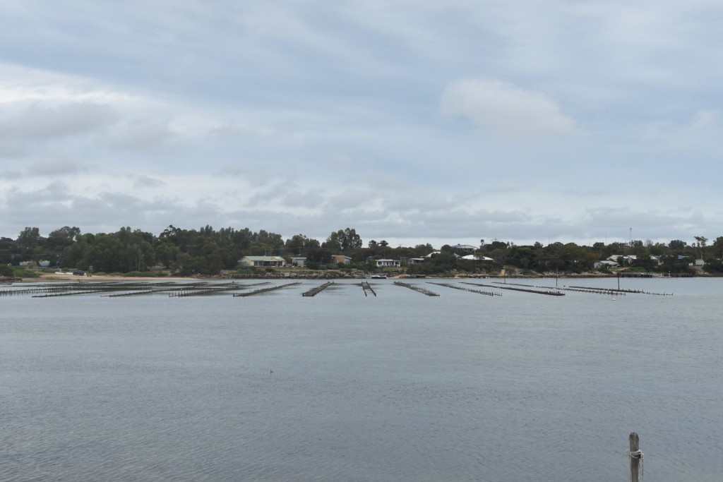 Smokey Bay