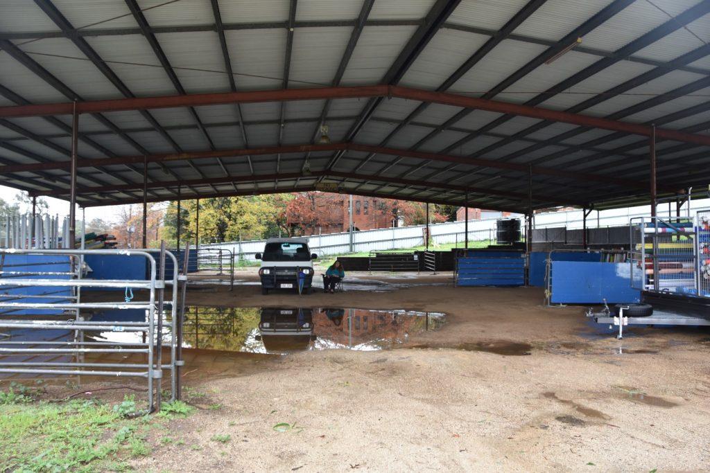 Cattle pavilion