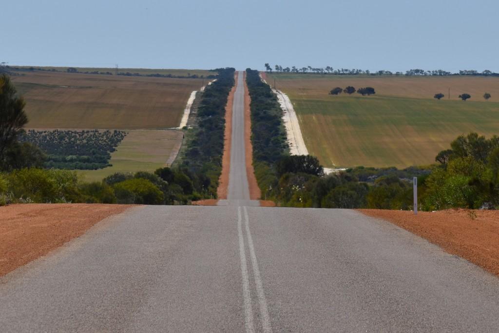Natural road verges