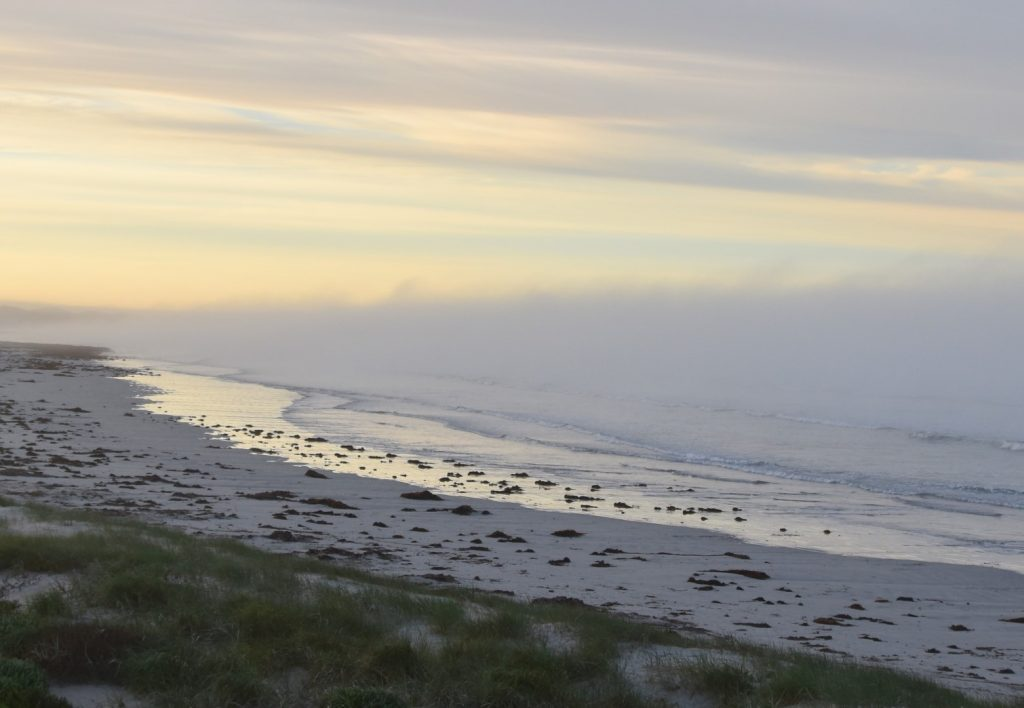 Beachport fog